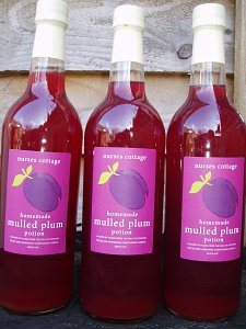 Mulled Plum Potion
